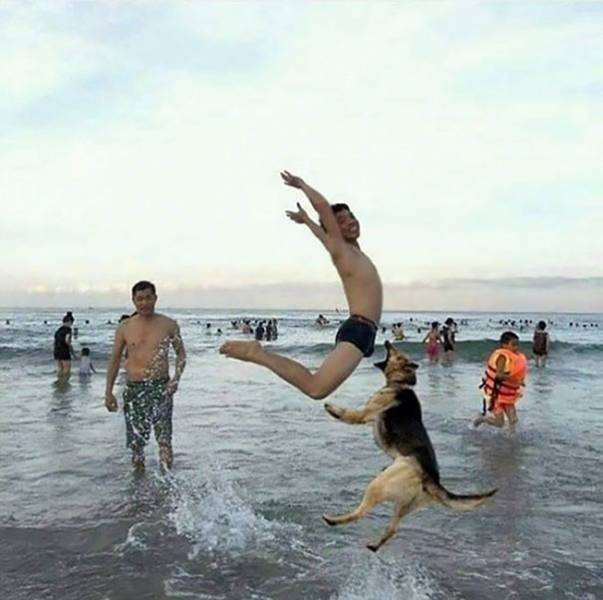You Don't Have To Be A Photographer To Take A Perfectly Timed Photo