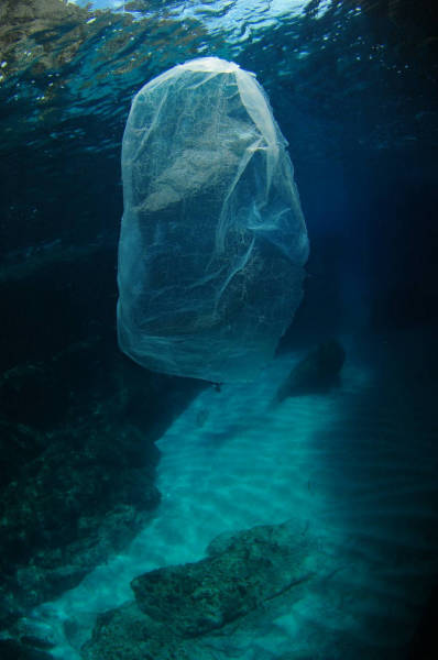 Here's How Much Trash Can Be Found At The Bottom Of The Sea