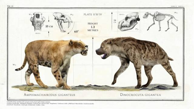 giant animals which became extinct long ago 11 pics