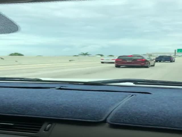 This Guy Went Full Length To Avoid Tolls