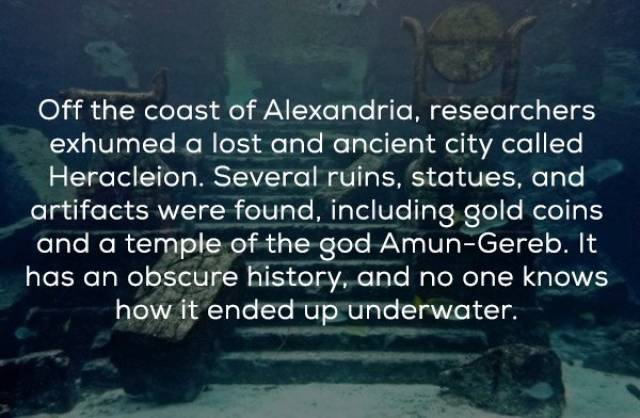 Underwater World Is Mysterious And Dangerous