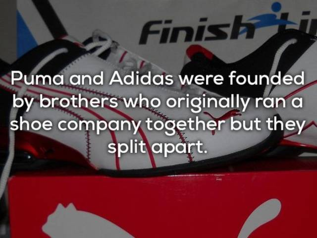 These Facts About Brands Seem Counterintuitive