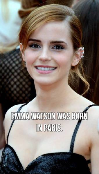 Some Things About Celebs That You Will Find Curious