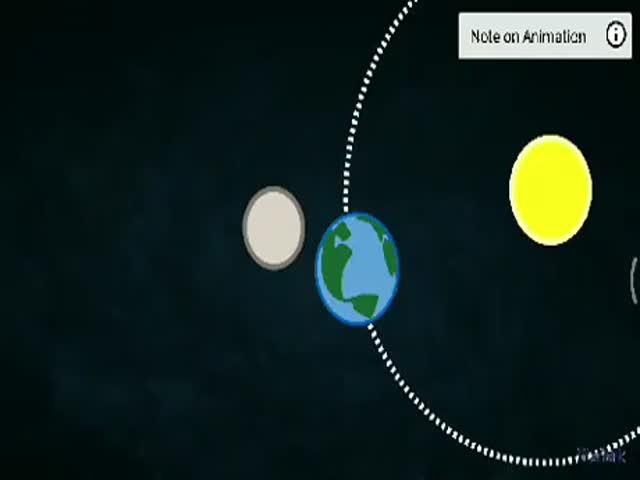 Flat Earth Anyone?