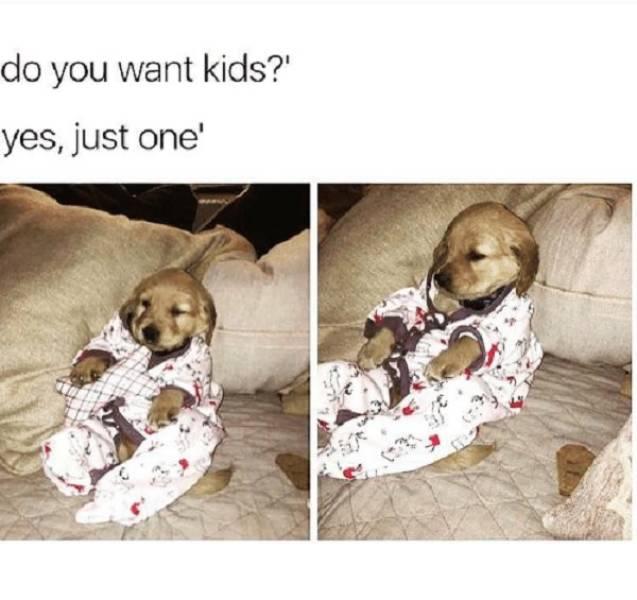 Absolutely Child-Free Memes (25 pics) - Izismile com