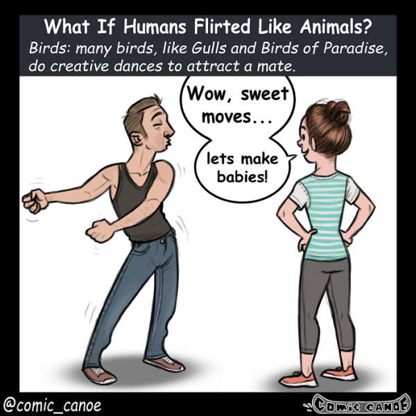 What If We Flirted Like Animals…