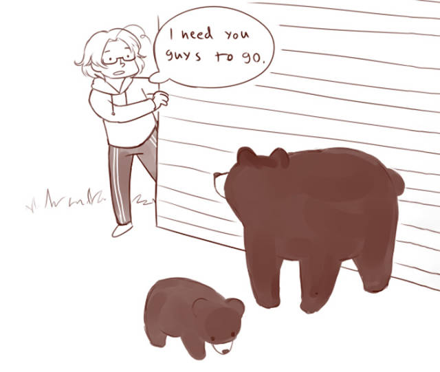 How Canadians Deal With Bears Vs. How Finns Deal With Bears