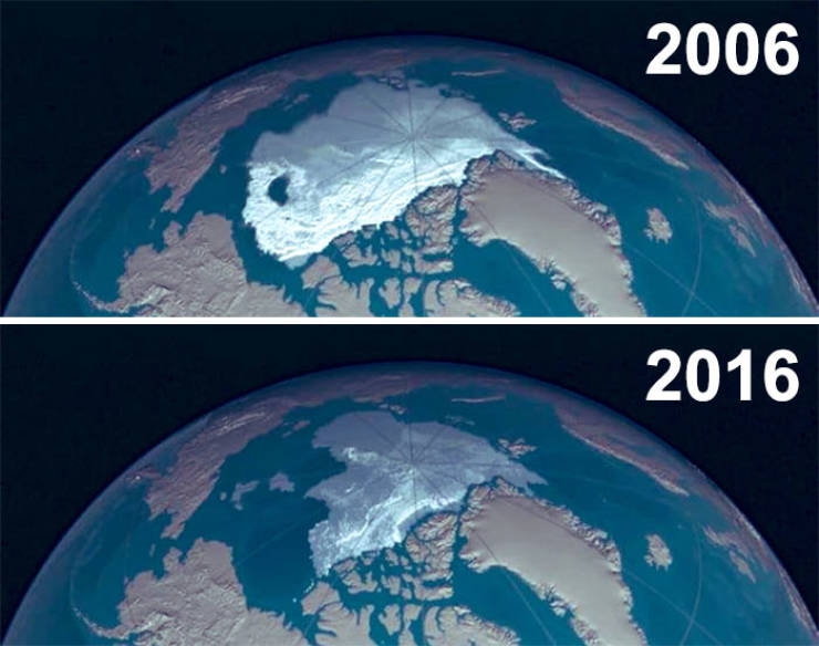 10-Year Challenge Isn't Funny When It Comes To Nature