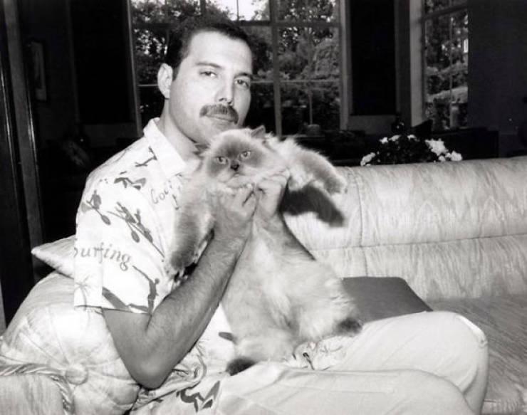 Freddie Mercury egy őrült macska srác volt!