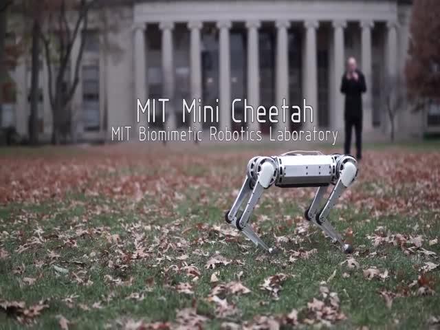 MIT's New Mini Cheetah Robot Is Good At Acrobatics