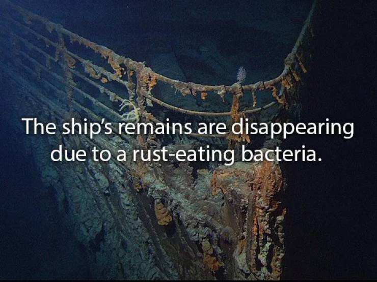 Fragile Facts About The Titanic