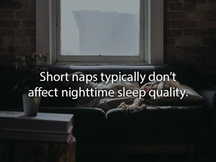 Rest With These Nap Facts