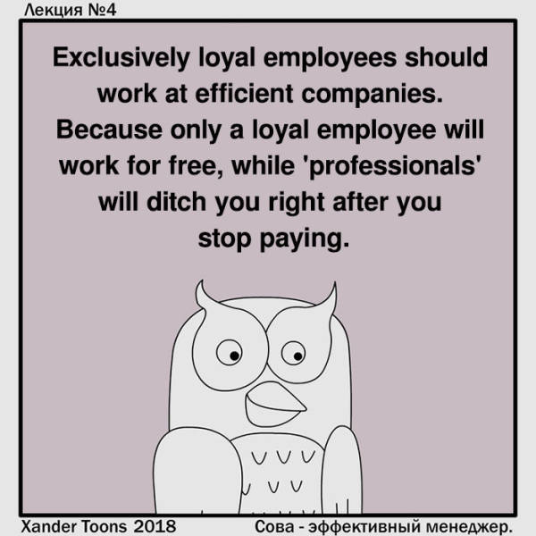 This Owl Is Everyone's Worst Boss