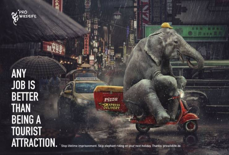 Powerful Social Ads That Will Make You Think About Your Actions
