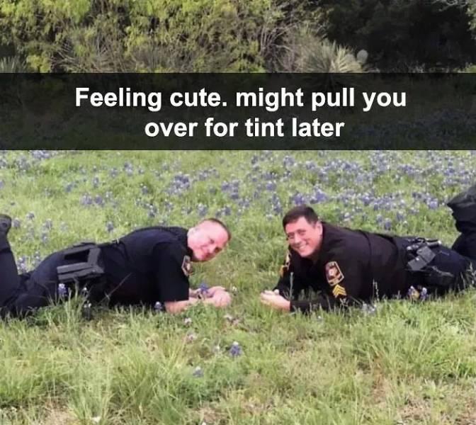 Feeling Cute Challenge Becomes A Giant Meme