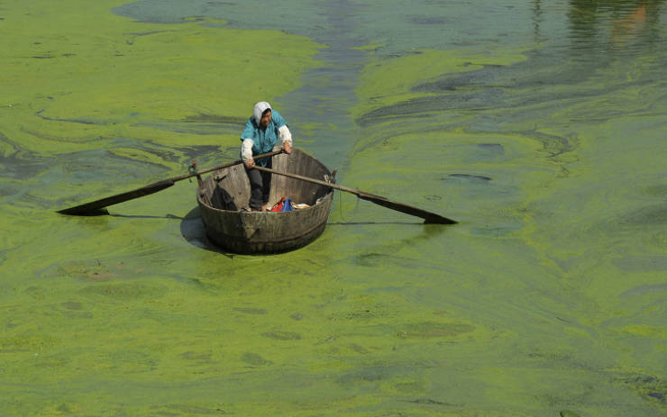 Photos That Show How Pollution Destroys Our Planet