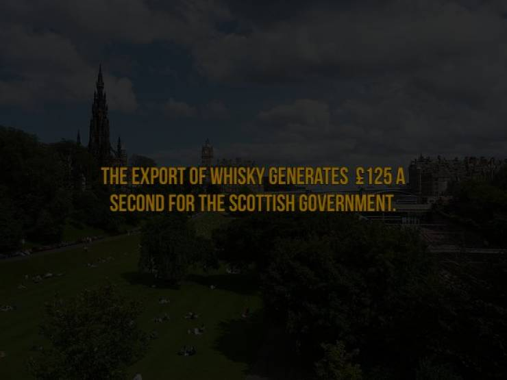 Do You Want Some Ice With Your Scotch Facts?