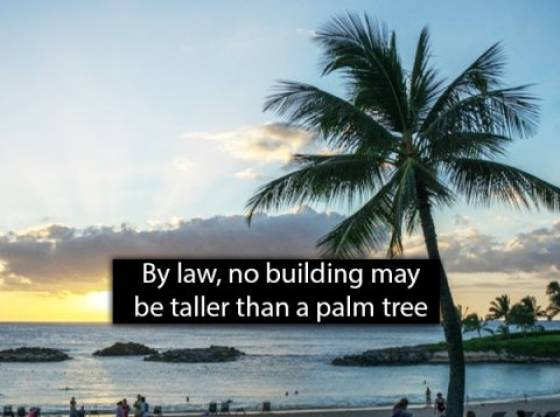 Chill With These Hawaii Facts