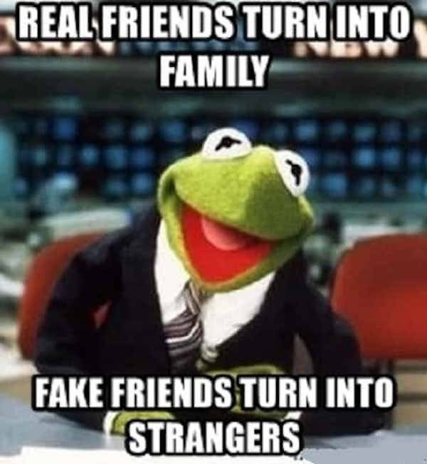 If You Have Fake Friends, At Least You Can Have These Absolutely Real Memes
