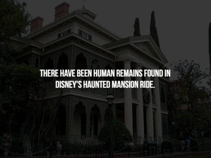 Creepy Facts To Start Your Week Right