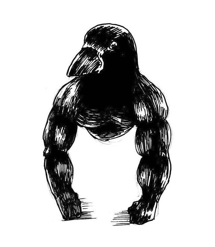 """Internet Finds A """"Gorilla Crow"""", Scientists Explain What It Really Is"""