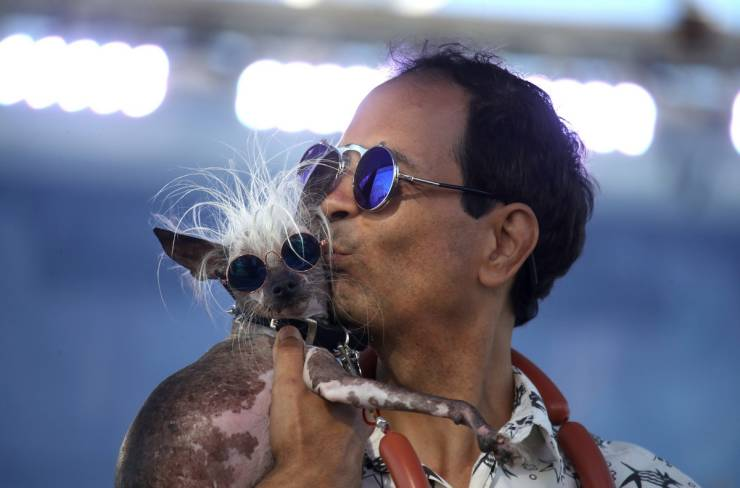 "Behold, ""World's Ugliest Dog"" Contenders!"