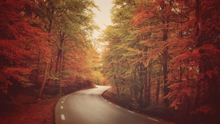 AGORA #RoadTrip2019 International Photography Contest Finalists Deserve Your Attention