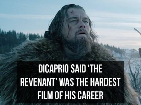 Claim Your Oscar With These Leonardo DiCaprio Facts