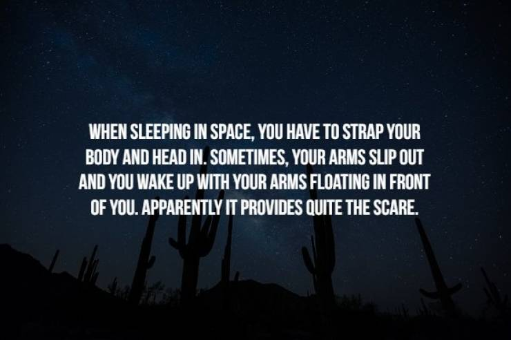 Everything Is Creepy In The Outer Space