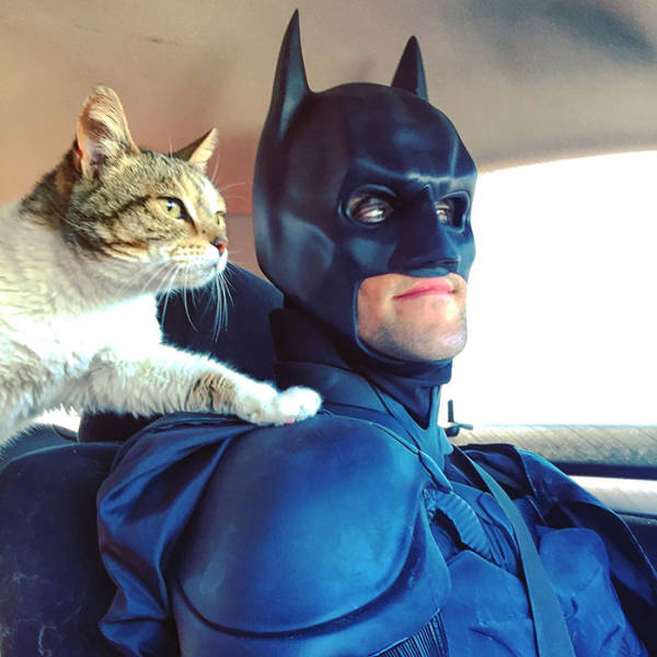 This Batman Is A Hero Who Saves Shelter Animals From Euthanasia