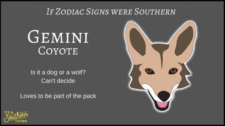 If Zodiac Signs Were Southern