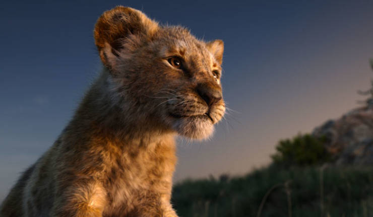 """Meet The Adorable Model Behind Baby Simba From The New """"Lion King"""""""