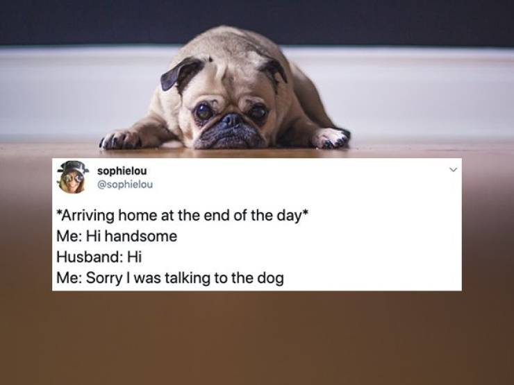 Married Life Is A Gallery Of Ridiculous Tweets