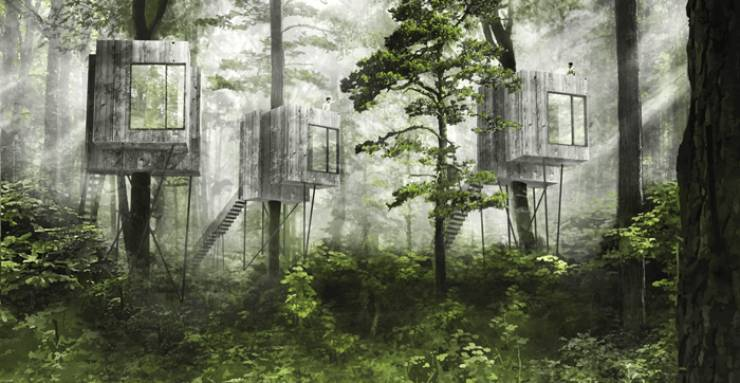 Want A Tree House But You're An Adult? Visit This Danish Hotel!