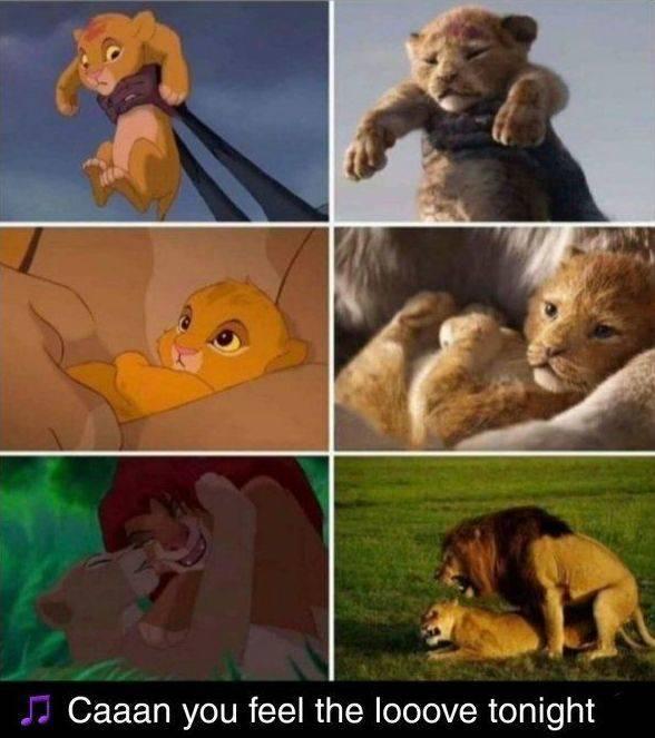 """Lion King"" Lives! Long Live The Lion King Memes!"