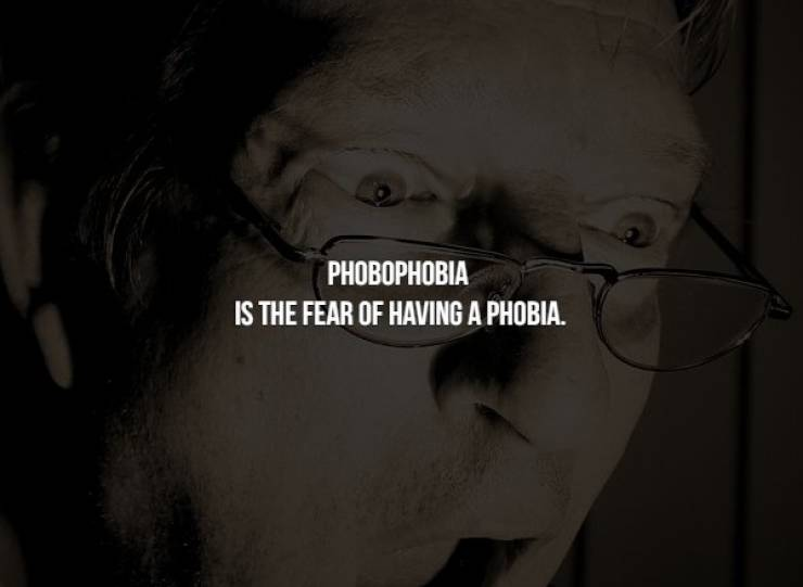 Terrifying Facts About Phobias