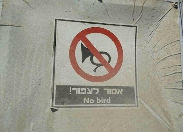 These Signs Are Not Even Fake!