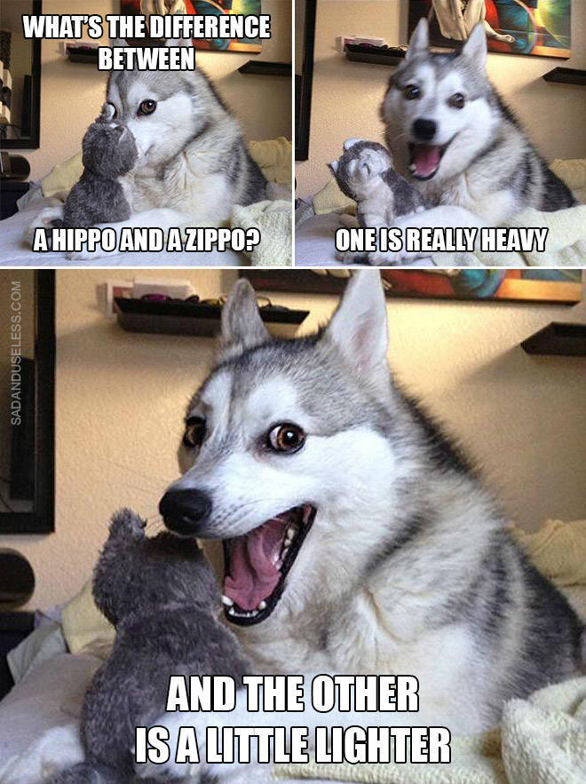 Dog, These Puns Are Awful!