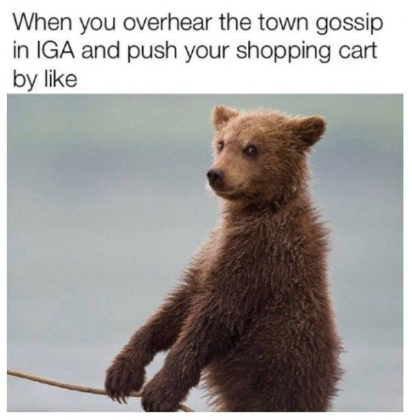 Small Towns Have Their Problems