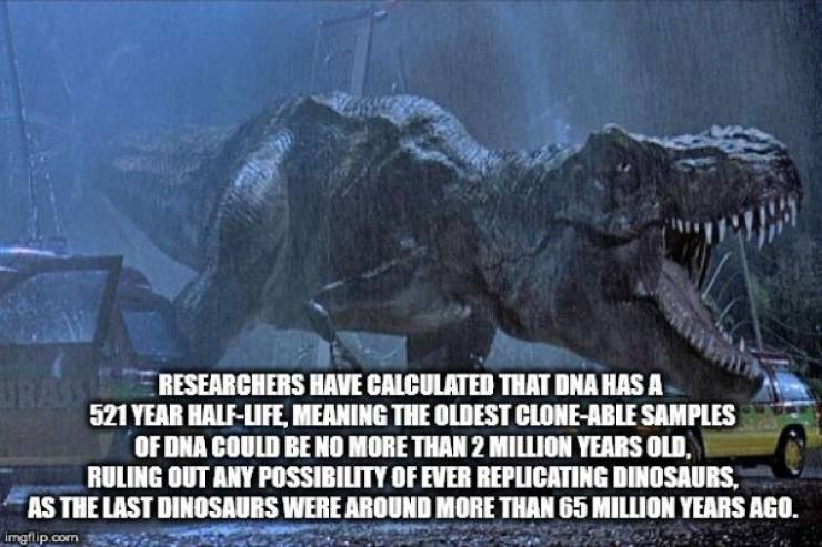 It's Random Facts Time!
