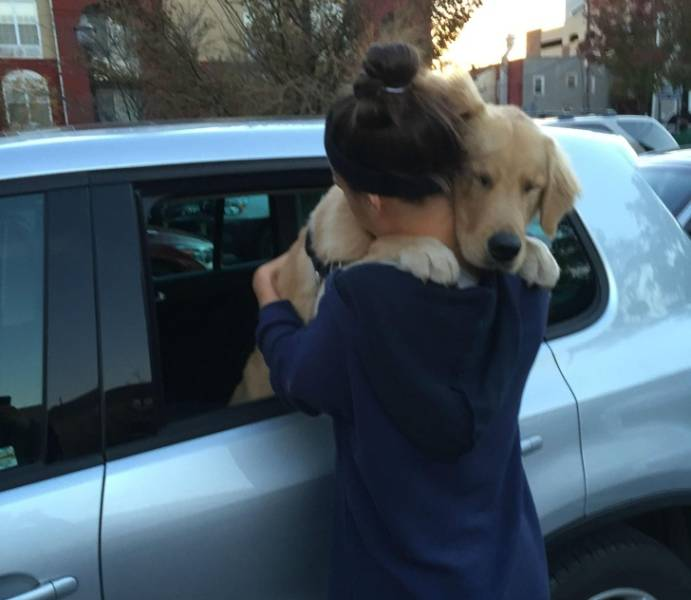 Pets + Owners = Infinite Love