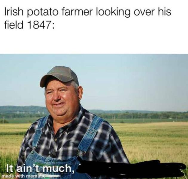 These Memes Are Historical, But Not Outdated