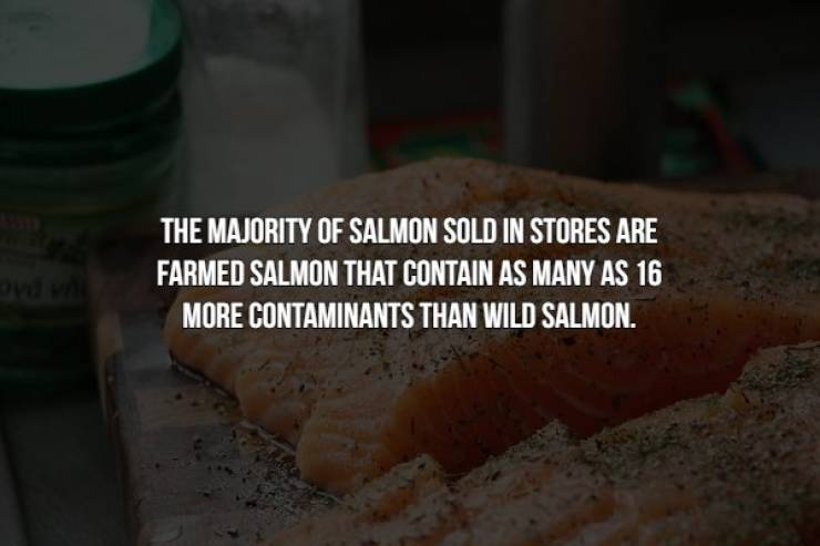 Food Facts Can Be Creepy Too