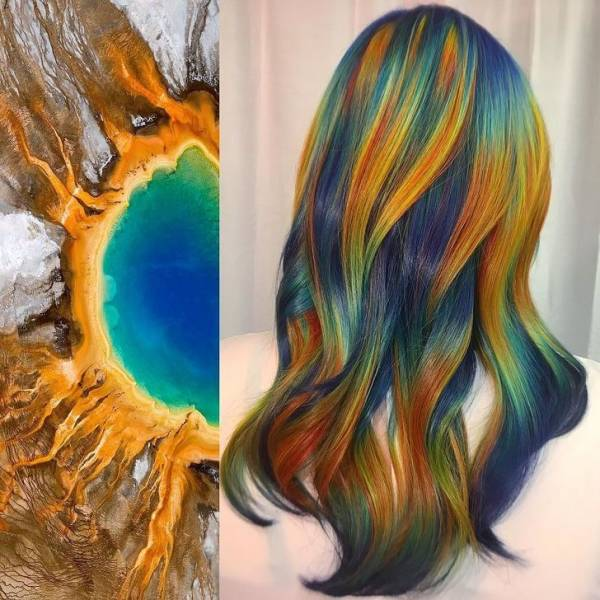 Stylist Combines Nature With Hair To Create Incredible Art