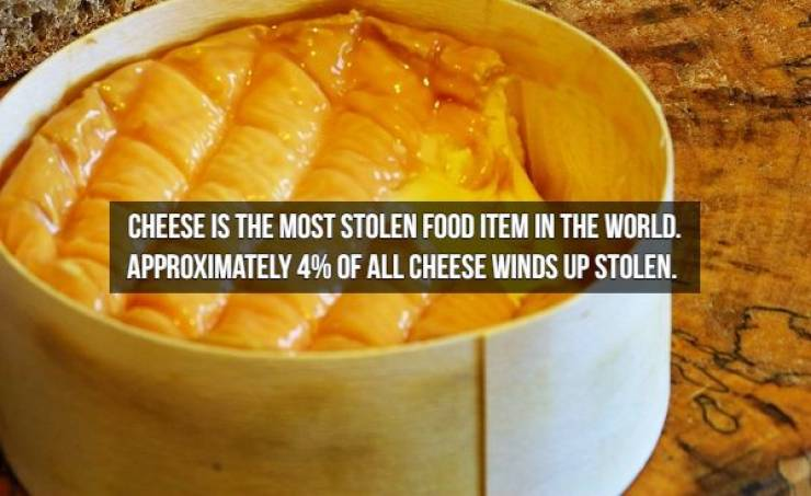 We Will Need Even More Cheese For These Cheese Facts