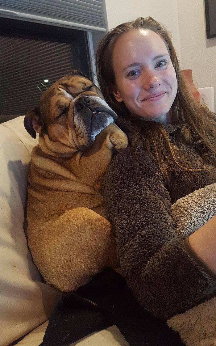 Dogs, How Do You Sleep Like This?!