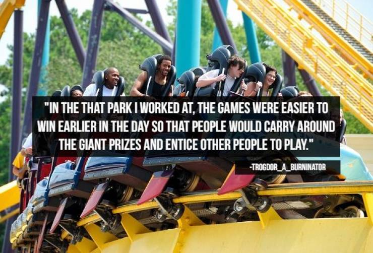 A Rollercoaster Of Theme Park Secrets