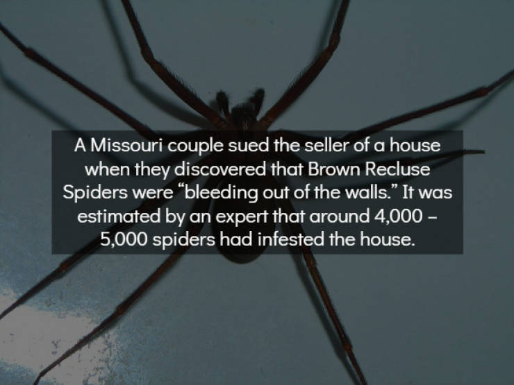 Chill With These Scary Facts