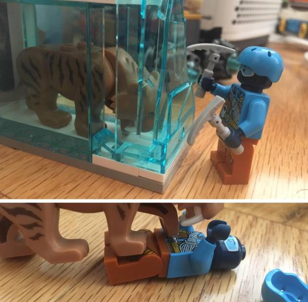 LEGO Building Can Be Professional!