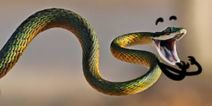 Snakes Look So Much Better With Arms!